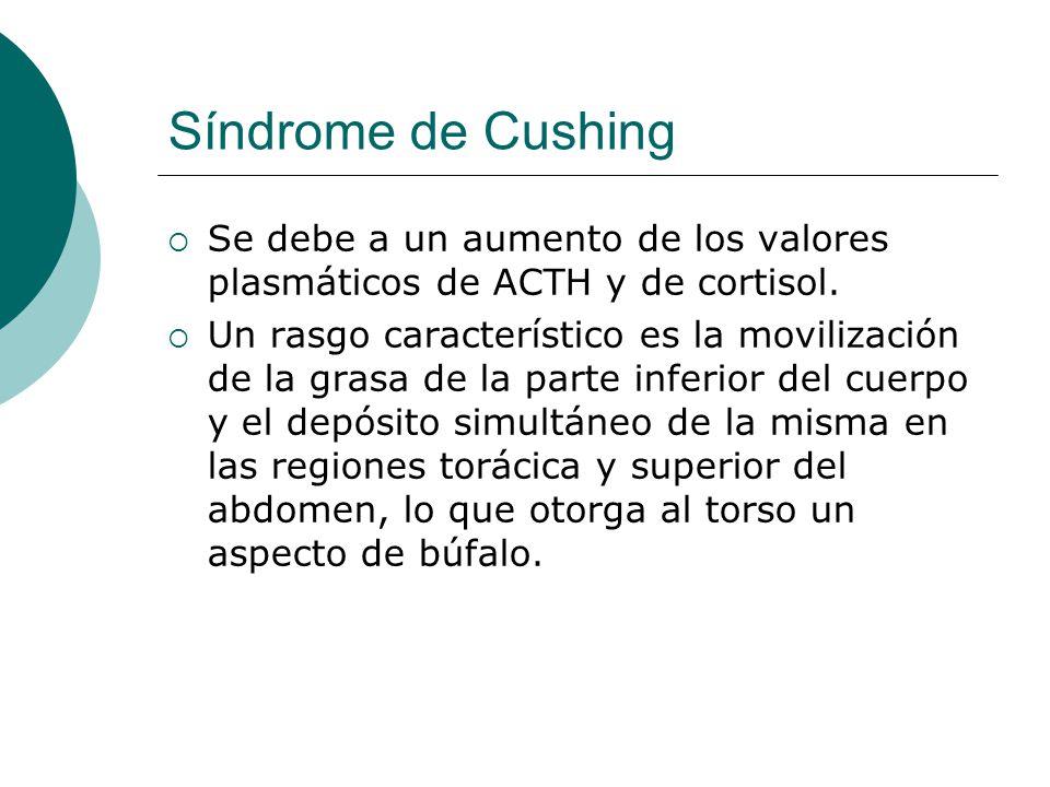 Síndrome de Cushing  Se debe a un aumento de los valores plasmáticos de ACTH y de cortisol.