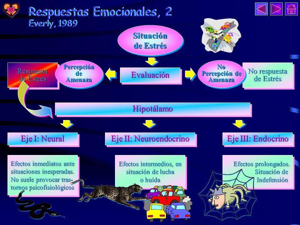 Respuestas Emocionales, 1 Respuestas Emocionales, 1 Selye (1976) ha descrito el desarrollo de la activación fisiológica en tres fases, dándole el nombre de SGA o Síndrome General de Activación.
