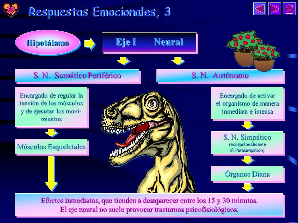 Respuestas Emocionales, 2 Everly, 1989 Respuestas Emocionales, 2 Everly, 1989 EvaluaciónEvaluación No respuesta de Estrés No respuesta de Estrés Situación Situación de Estrés No Percepción de Amenaza No Percepción de Amenaza Respuesta de Estrés Respuesta PercepcióndeAmenaza Percepción de Amenaza HipotálamoHipotálamo Eje I: Neural Eje II: Neuroendocrino Eje III: Endocrino Efectos inmediatos ante situaciones inesperadas.