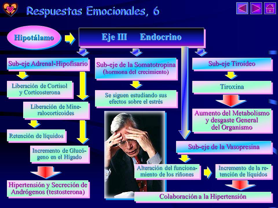 Respuestas Emocionales, 5 Respuestas Emocionales, 5 - Presión arterial.