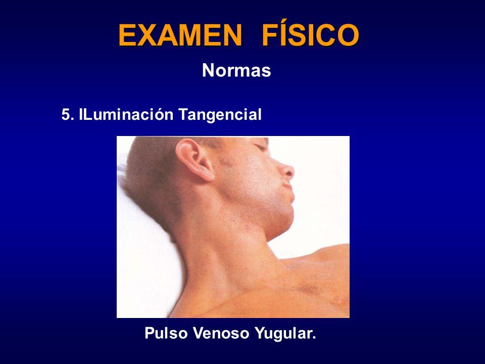 EXAMEN FÍSICO Normas 5. ILuminación Tangencial Pulso Venoso Yugular.