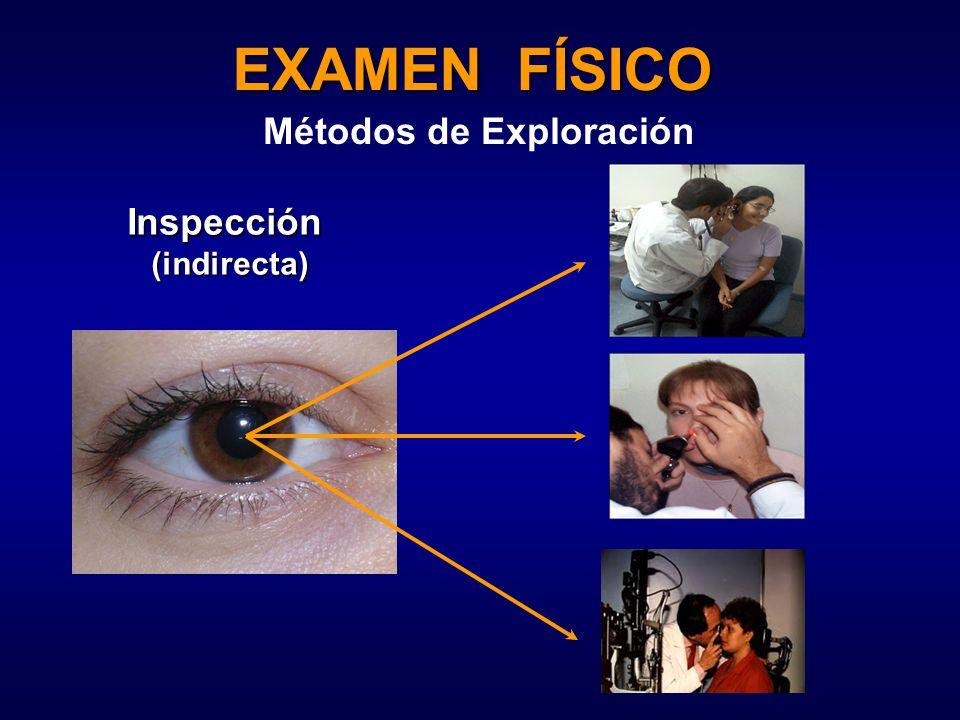 EXAMEN FÍSICO Métodos de Exploración Inspección(indirecta)