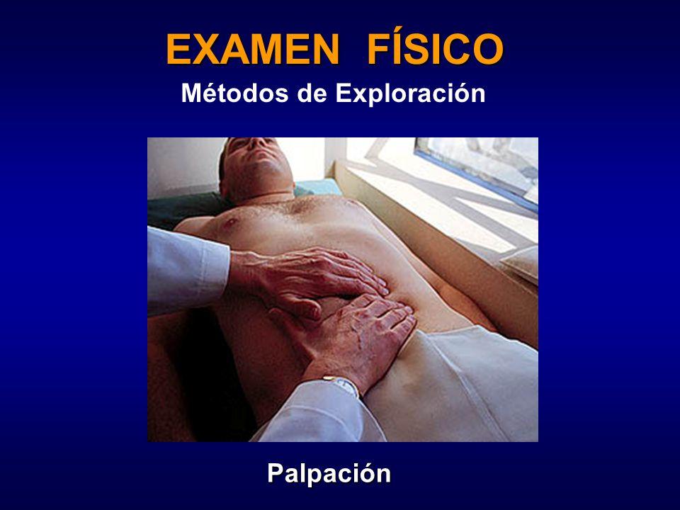 EXAMEN FÍSICO Métodos de Exploración Palpación