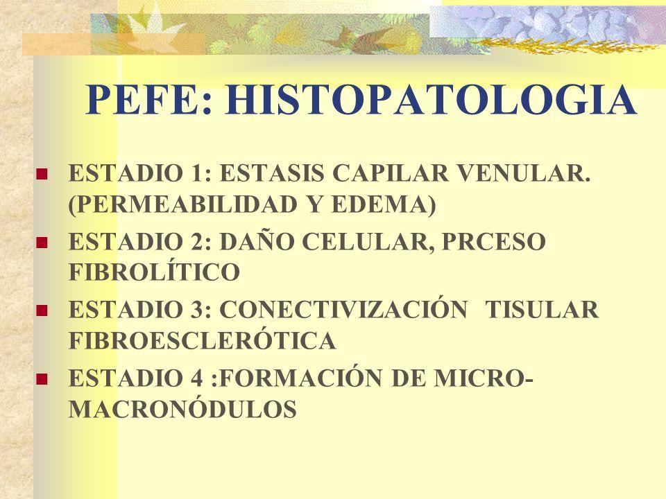 PEFE: HISTOPATOLOGIA ESTADIO 1: ESTASIS CAPILAR VENULAR.