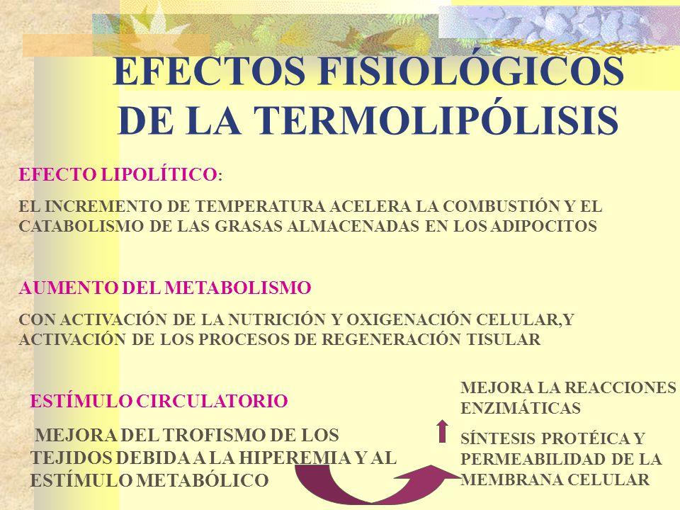 EFECTOS FISIOLÓGICOS DE LA TERMOLIPÓLISIS EFECTO LIPOLÍTICO : EL INCREMENTO DE TEMPERATURA ACELERA LA COMBUSTIÓN Y EL CATABOLISMO DE LAS GRASAS ALMACENADAS EN LOS ADIPOCITOS AUMENTO DEL METABOLISMO CON ACTIVACIÓN DE LA NUTRICIÓN Y OXIGENACIÓN CELULAR,Y ACTIVACIÓN DE LOS PROCESOS DE REGENERACIÓN TISULAR ESTÍMULO CIRCULATORIO MEJORA DEL TROFISMO DE LOS TEJIDOS DEBIDA A LA HIPEREMIA Y AL ESTÍMULO METABÓLICO MEJORA LA REACCIONES ENZIMÁTICAS SÍNTESIS PROTÉICA Y PERMEABILIDAD DE LA MEMBRANA CELULAR