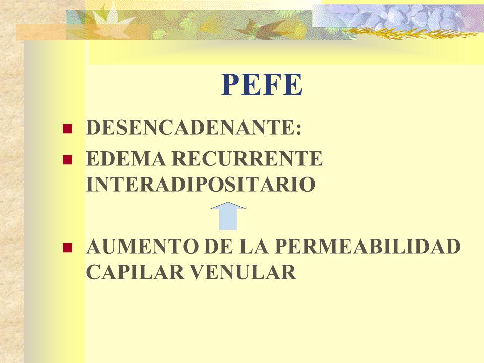 PEFE DESENCADENANTE: EDEMA RECURRENTE INTERADIPOSITARIO AUMENTO DE LA PERMEABILIDAD CAPILAR VENULAR