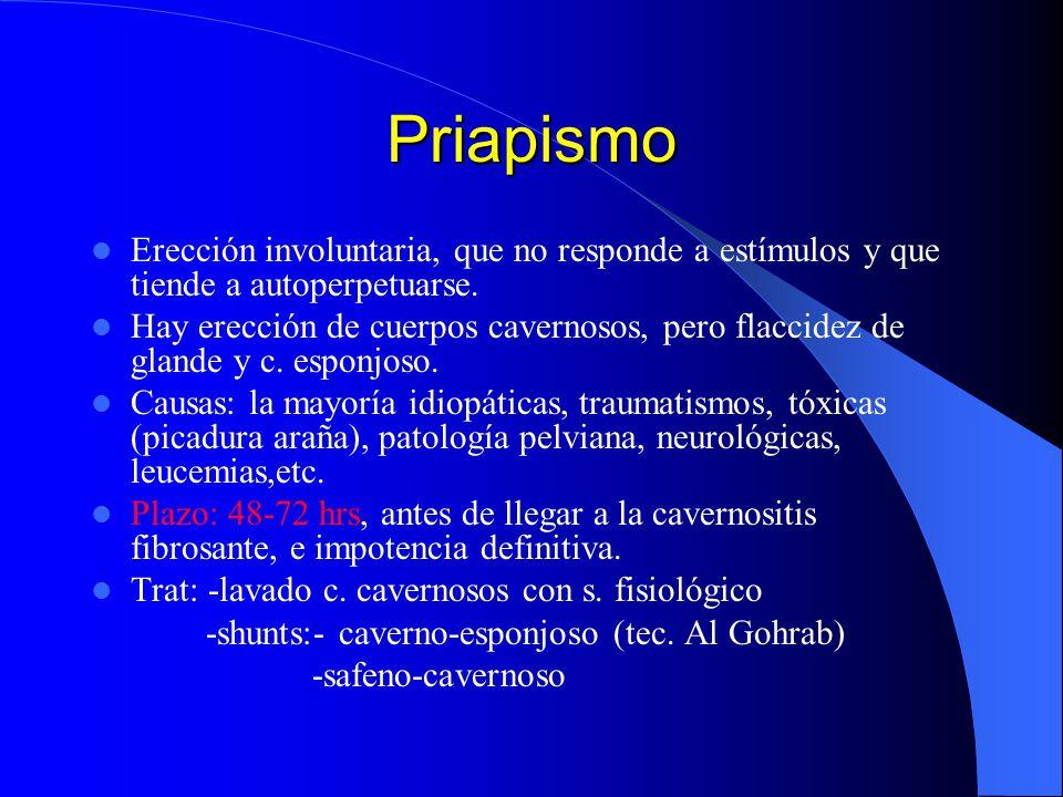 Priapismo Erección involuntaria, que no responde a estímulos y que tiende a autoperpetuarse. Hay erección de cuerpos cavernosos, pero flaccidez de gla