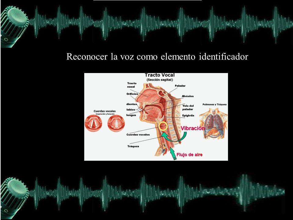 Reconocer la voz como elemento identificador