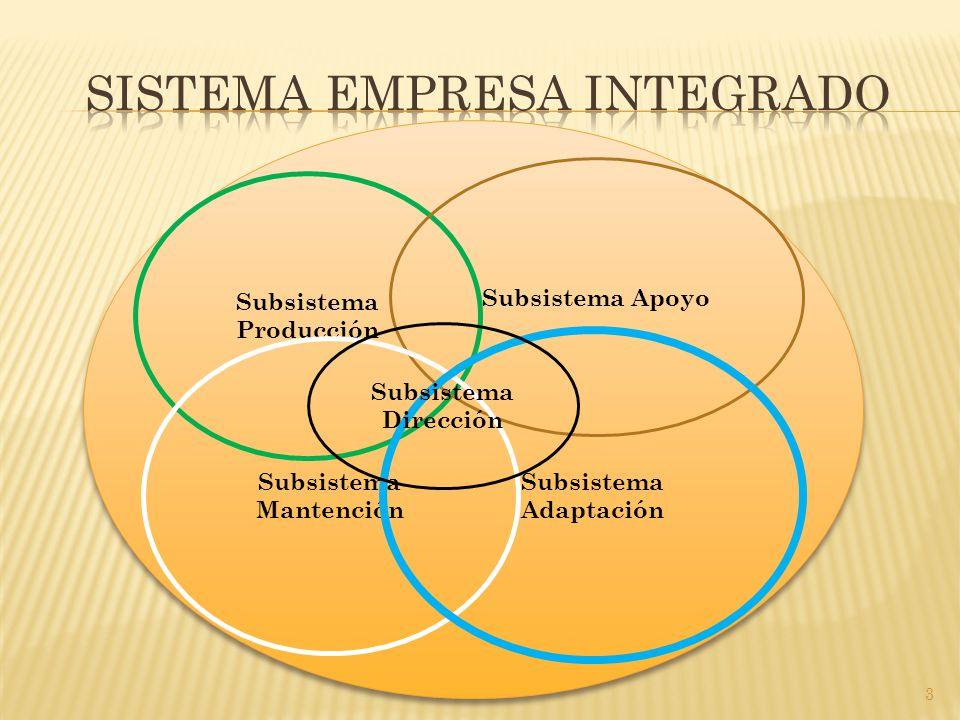 3 Subsistema Producción Subsistema Apoyo Subsistema Mantención Subsistema Adaptación Subsistema Dirección