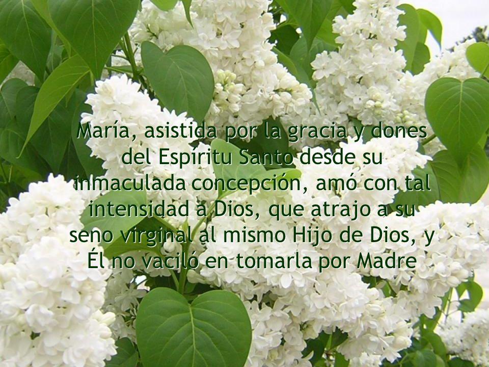 ¡Cuán lejos estaba María de pensar que Gabriel arcángel le anunciase su elección para la alta dignidad de Madre de Dios!.