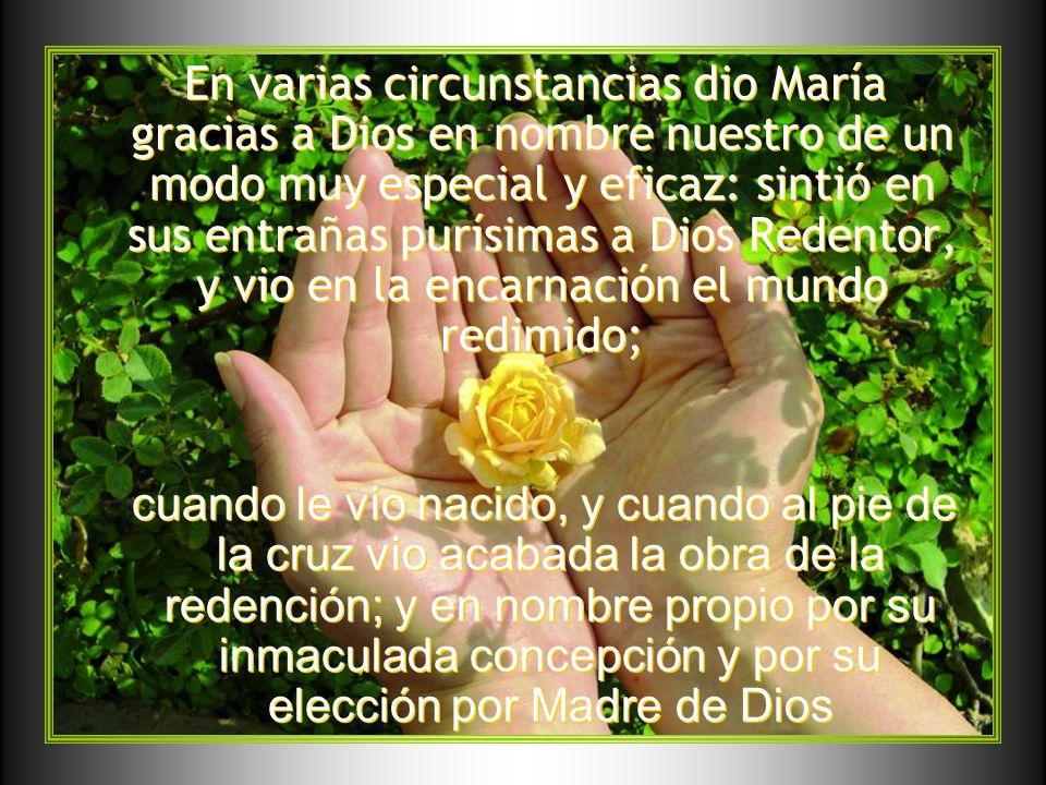 María, asistida por la gracia y dones del Espíritu Santo desde su inmaculada concepción, amó con tal intensidad a Dios, que atrajo a su seno virginal al mismo Hijo de Dios, y Él no vaciló en tomarla por Madre