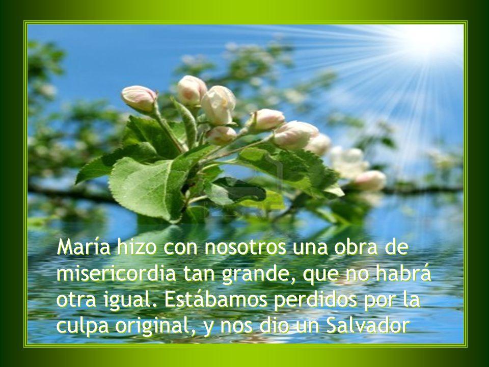 Y, como en la tierra un buen hijo no niega a su madre ninguna gracia que sea justa y necesaria, mucho menos en el cielo negará Jesucristo a su Madre lo que le pida siendo, como es, tan justo y necesario