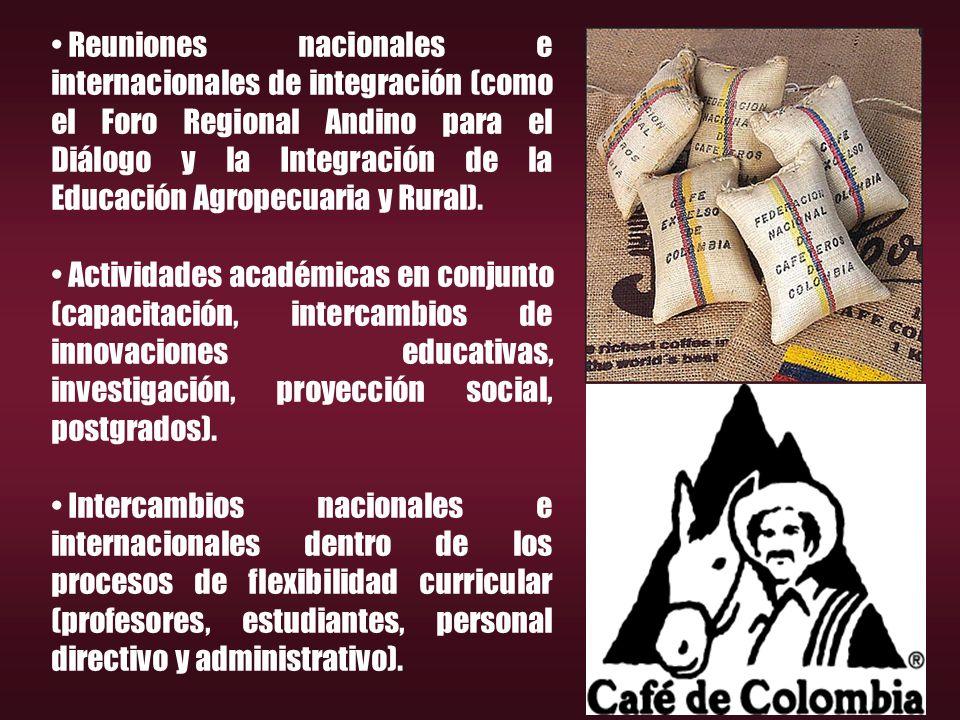 Reuniones nacionales e internacionales de integración (como el Foro Regional Andino para el Diálogo y la Integración de la Educación Agropecuaria y Rural).