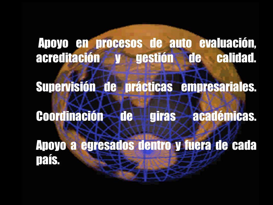 Apoyo en procesos de auto evaluación, acreditación y gestión de calidad.