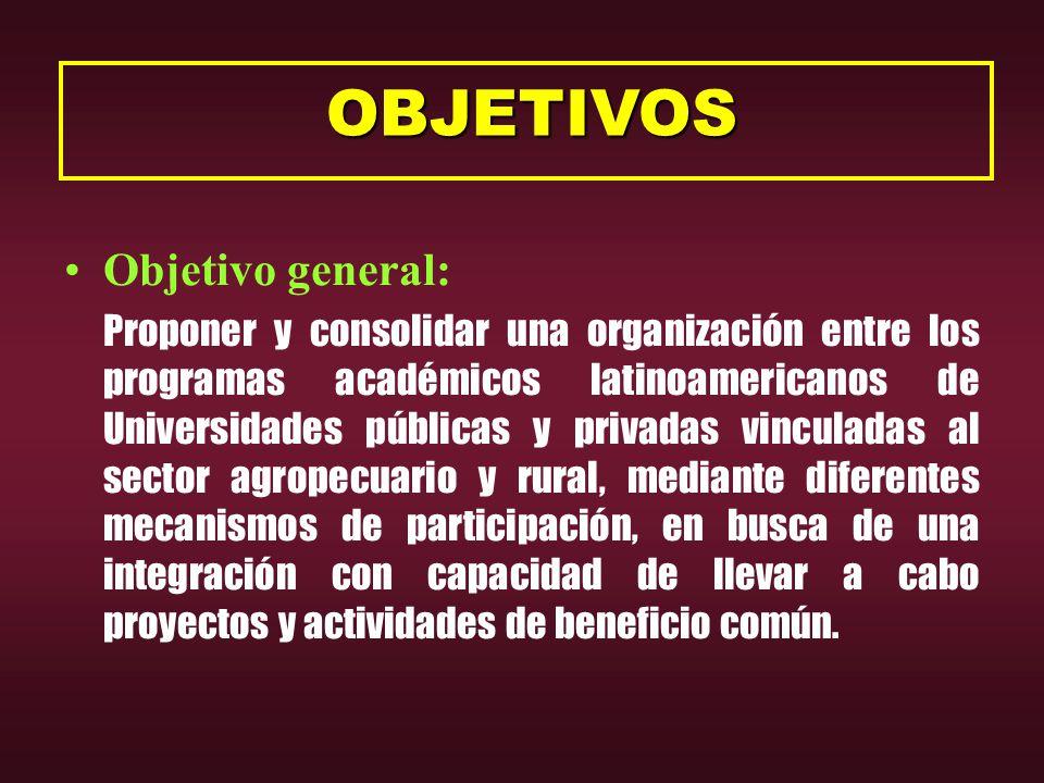OBJETIVOS OBJETIVOS Objetivo general: Proponer y consolidar una organización entre los programas académicos latinoamericanos de Universidades públicas y privadas vinculadas al sector agropecuario y rural, mediante diferentes mecanismos de participación, en busca de una integración con capacidad de llevar a cabo proyectos y actividades de beneficio común.