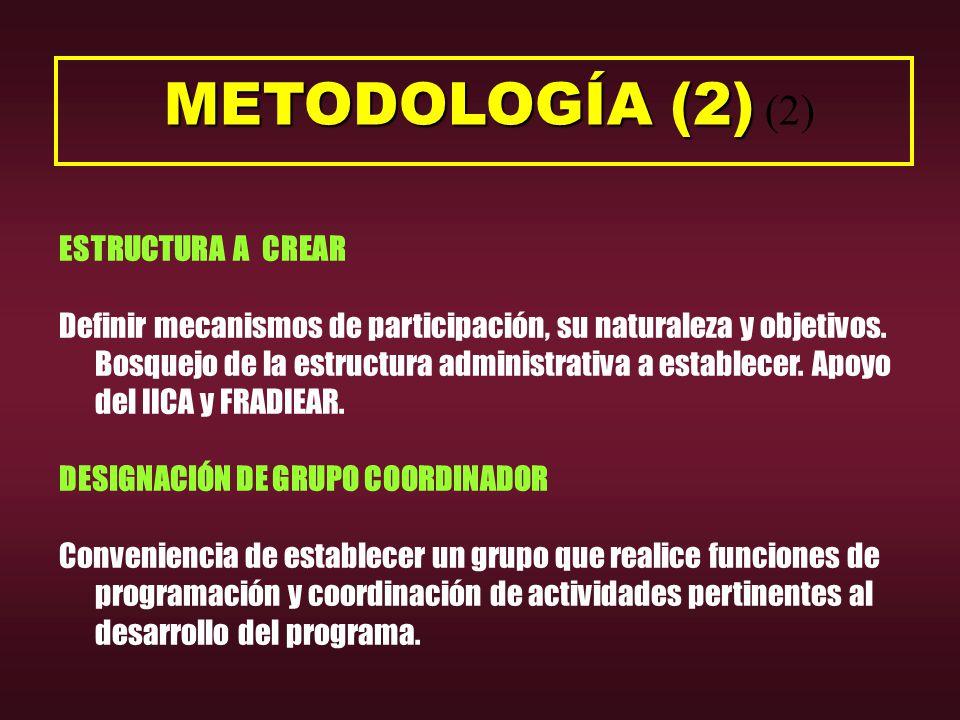 METODOLOGÍA (2) METODOLOGÍA (2) (2) ESTRUCTURA A CREAR Definir mecanismos de participación, su naturaleza y objetivos.