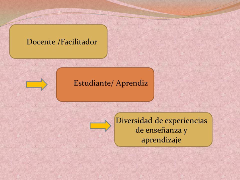 Docente /Facilitador Estudiante/ Aprendiz Diversidad de experiencias de enseñanza y aprendizaje