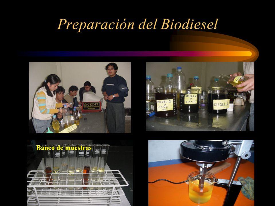 Preparación del Biodiesel Banco de muestras