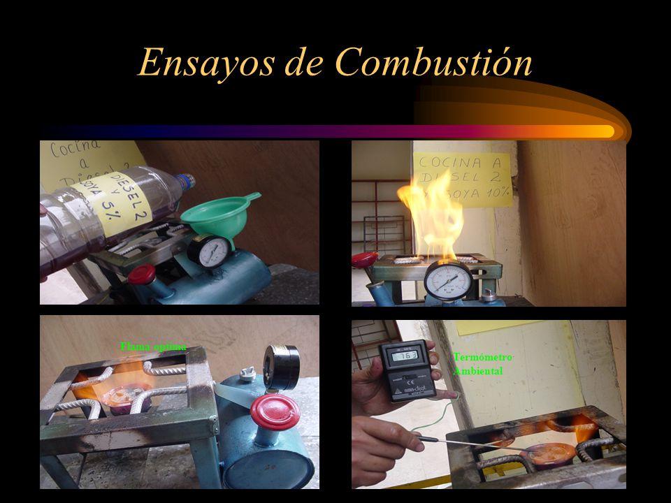 Ensayos de Combustión Termómetro Ambiental Flama optima