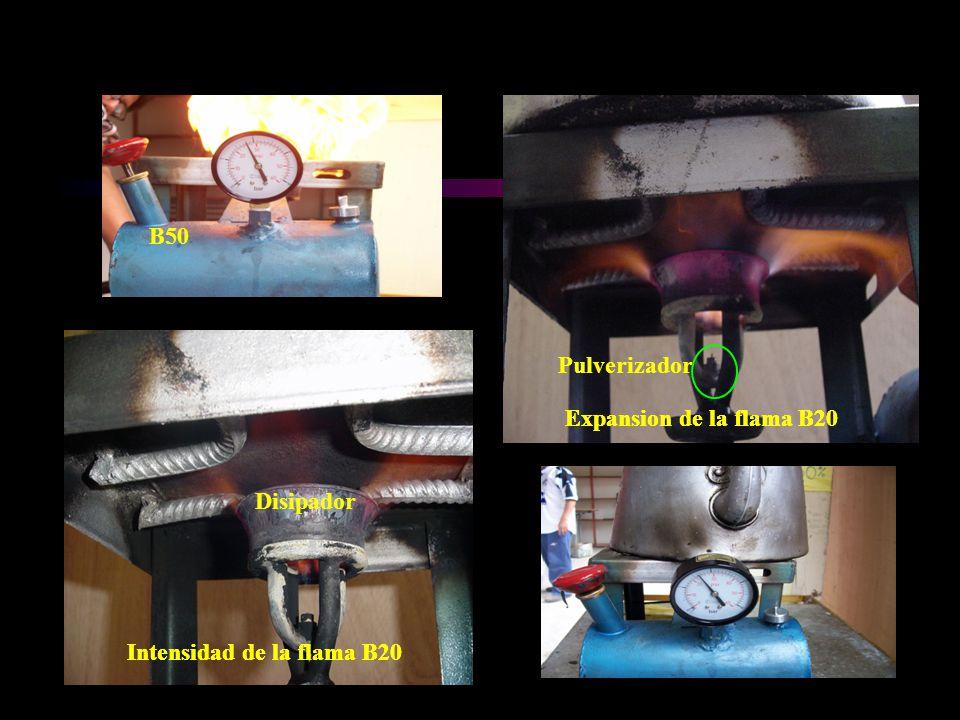 Intensidad de la flama B20 Expansion de la flama B20 Intensidad de la flama B20 Expansion de la flama B20 B50 Disipador Pulverizador