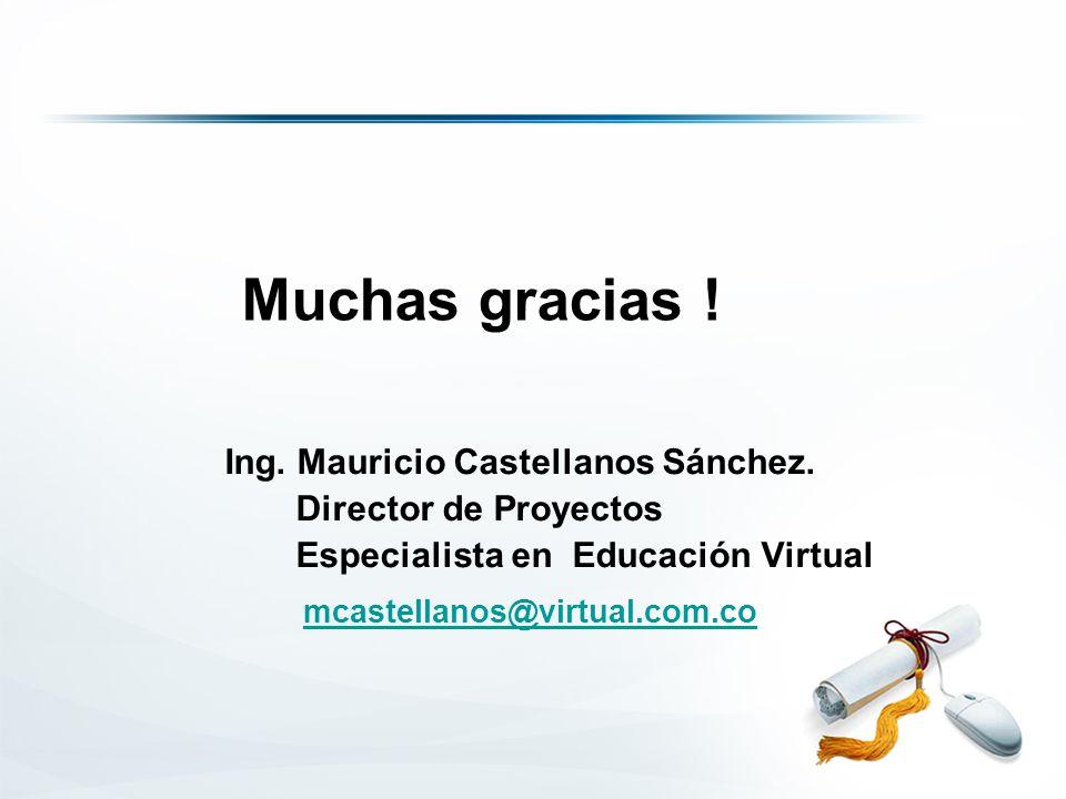 Ing. Mauricio Castellanos Sánchez.