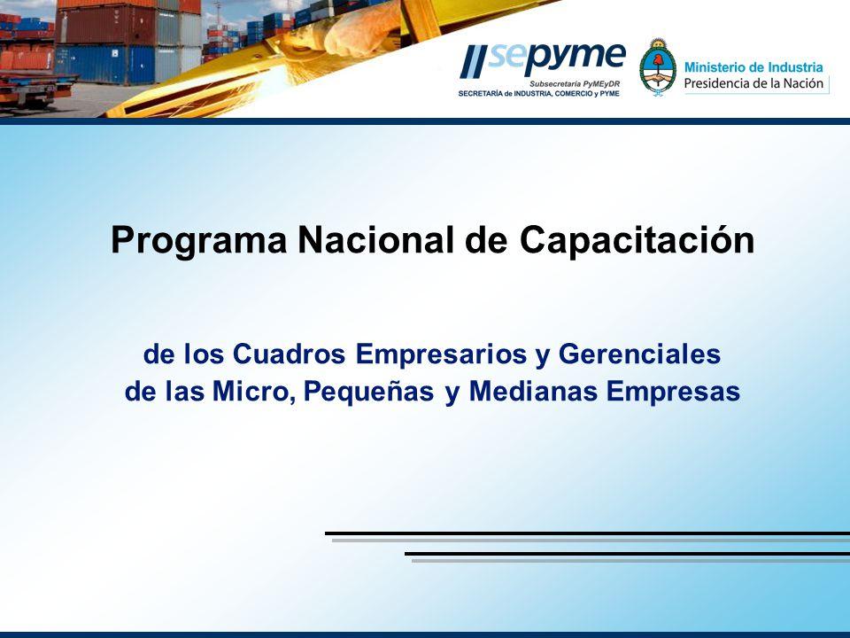 Programa Nacional de Capacitación de los Cuadros Empresarios y Gerenciales de las Micro, Pequeñas y Medianas Empresas