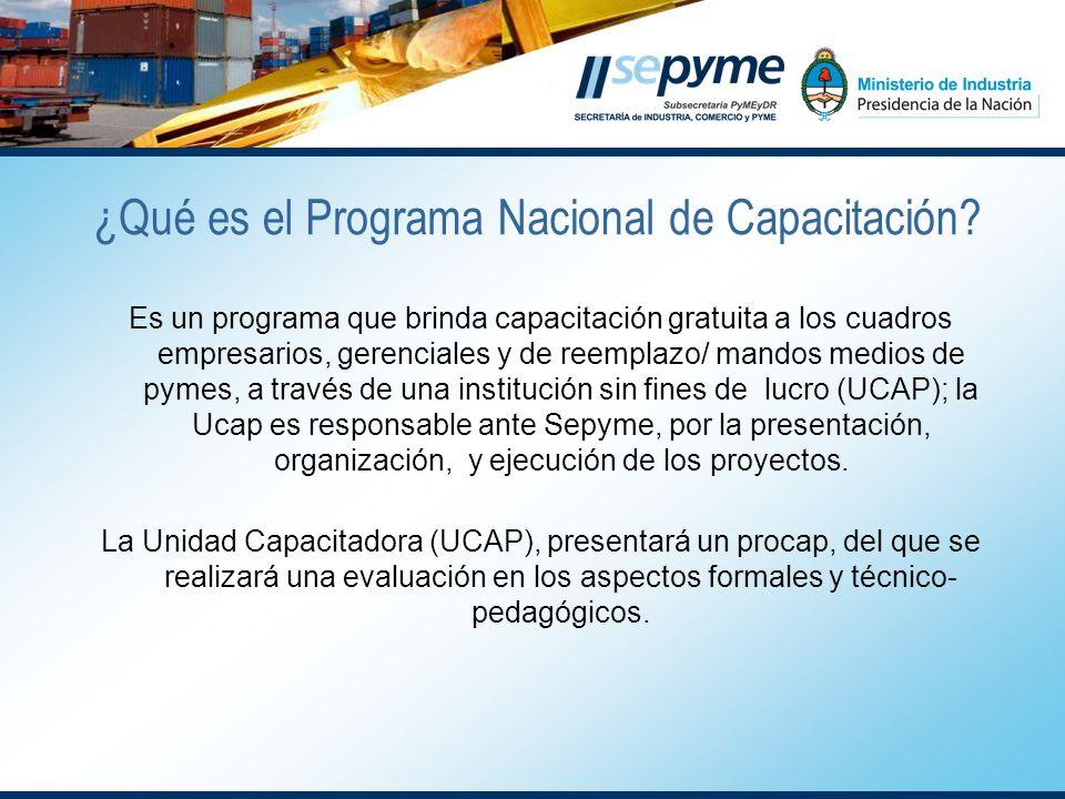 Es un programa que brinda capacitación gratuita a los cuadros empresarios, gerenciales y de reemplazo/ mandos medios de pymes, a través de una institución sin fines de lucro (UCAP); la Ucap es responsable ante Sepyme, por la presentación, organización, y ejecución de los proyectos.