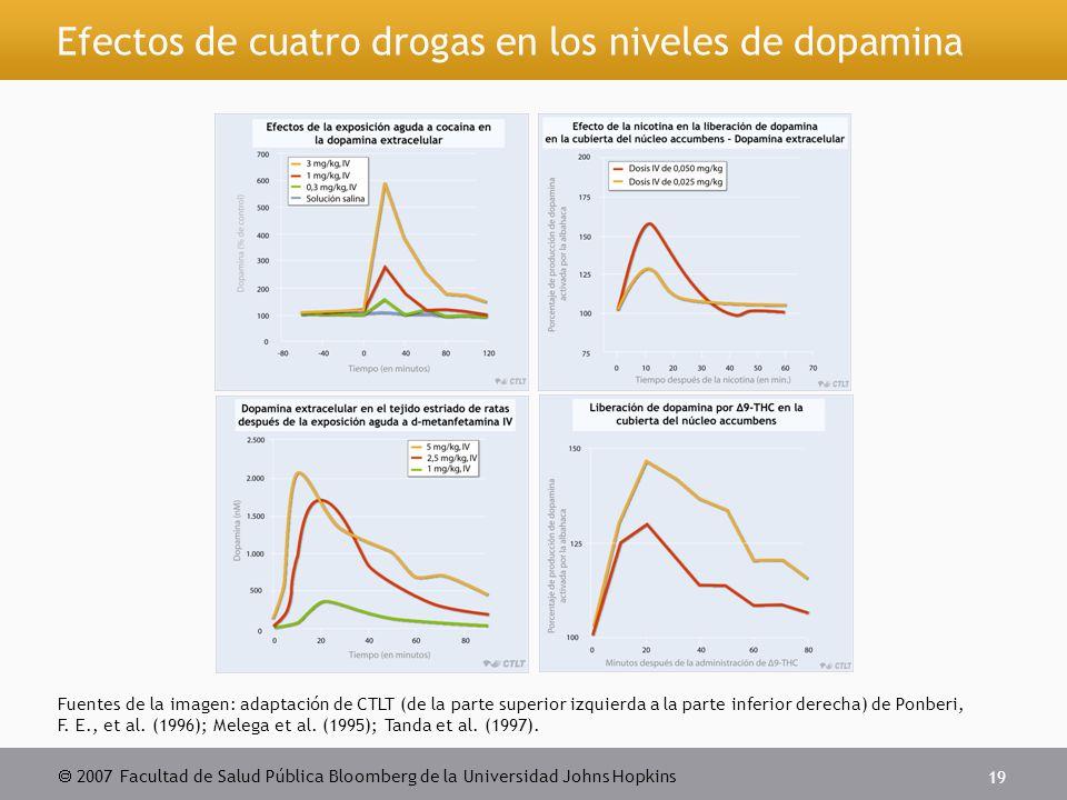  2007 Facultad de Salud Pública Bloomberg de la Universidad Johns Hopkins 19 Efectos de cuatro drogas en los niveles de dopamina Fuentes de la imagen: adaptación de CTLT (de la parte superior izquierda a la parte inferior derecha) de Ponberi, F.