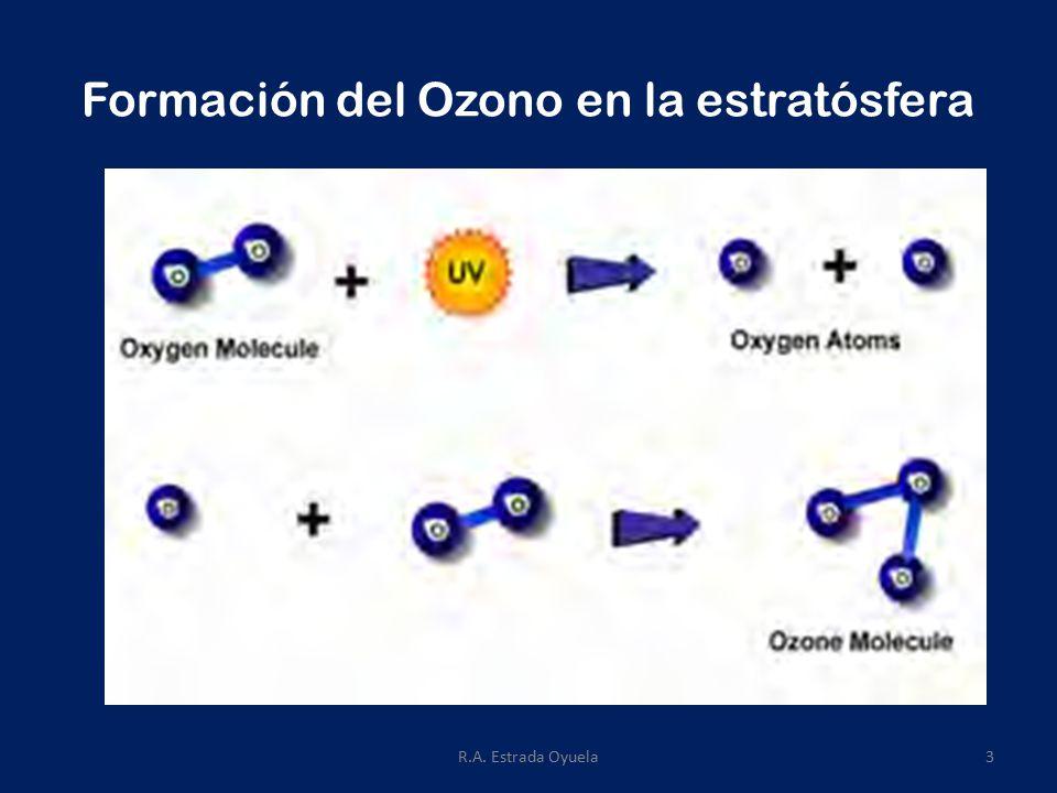 R.A. Estrada Oyuela3 Formación del Ozono en la estratósfera