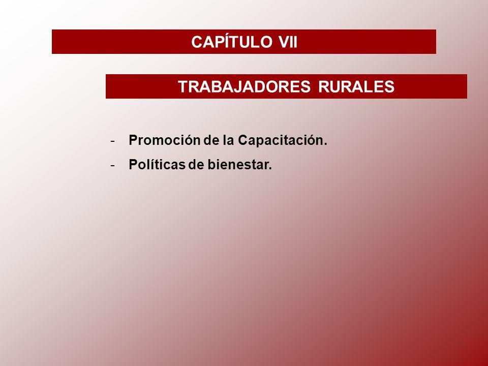 CAPÍTULO VII TRABAJADORES RURALES -P-Promoción de la Capacitación. -P-Políticas de bienestar.