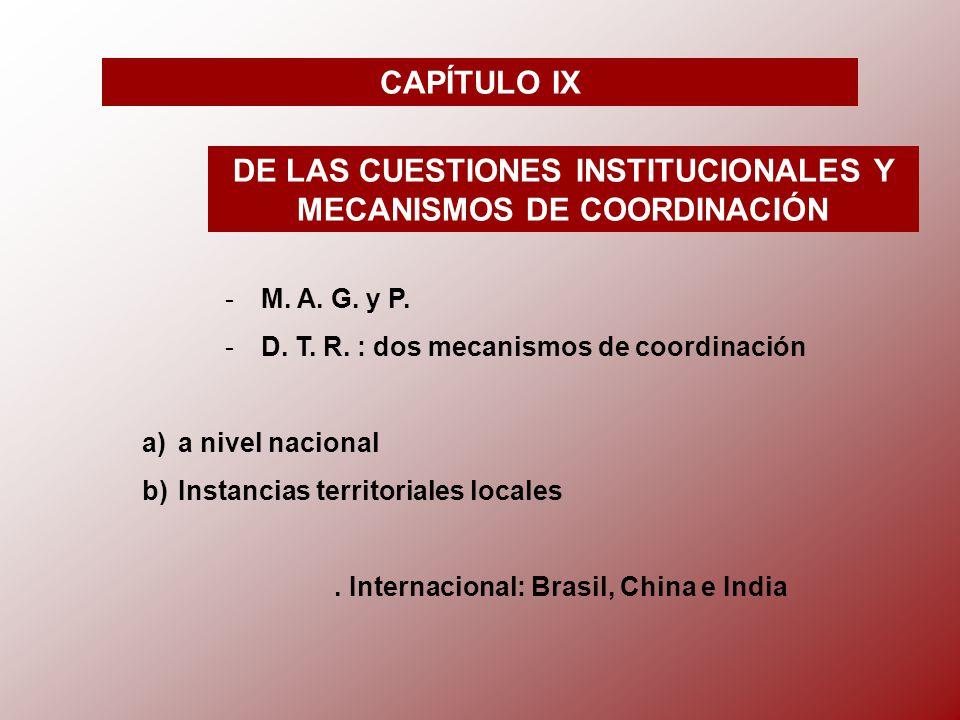 CAPÍTULO IX DE LAS CUESTIONES INSTITUCIONALES Y MECANISMOS DE COORDINACIÓN -M-M.