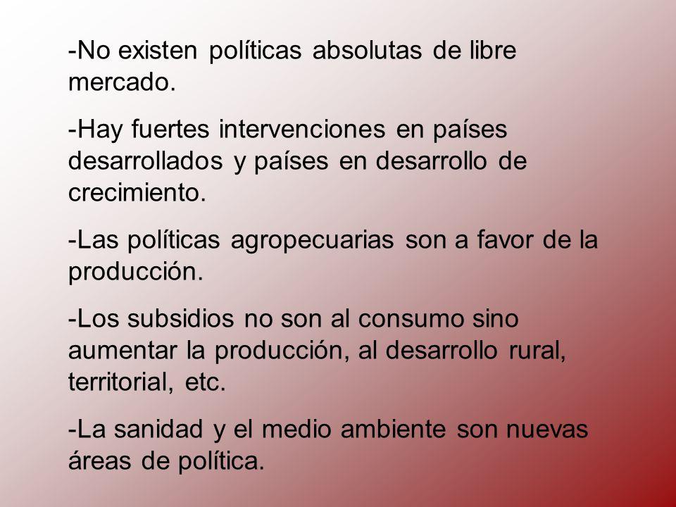 -N-No existen políticas absolutas de libre mercado.