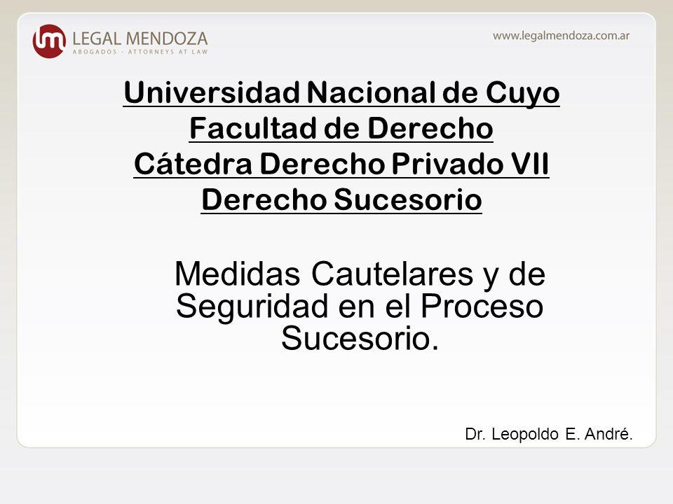 Universidad Nacional de Cuyo Facultad de Derecho Cátedra Derecho Privado VII Derecho Sucesorio Medidas Cautelares y de Seguridad en el Proceso Sucesorio.