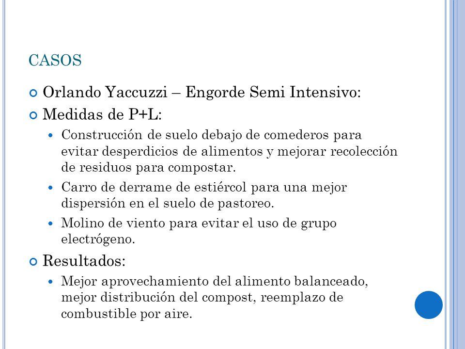 CASOS Orlando Yaccuzzi – Engorde Semi Intensivo: Medidas de P+L: Construcción de suelo debajo de comederos para evitar desperdicios de alimentos y mejorar recolección de residuos para compostar.