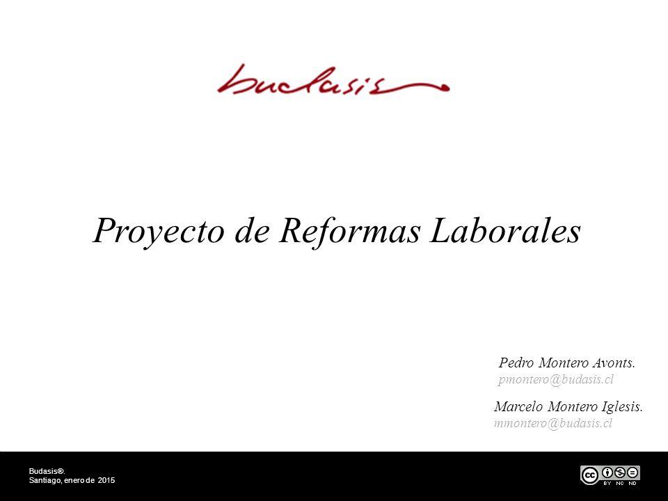 Proyecto de Reformas Laborales Budasis®. Santiago, enero de 2015 Pedro Montero Avonts.