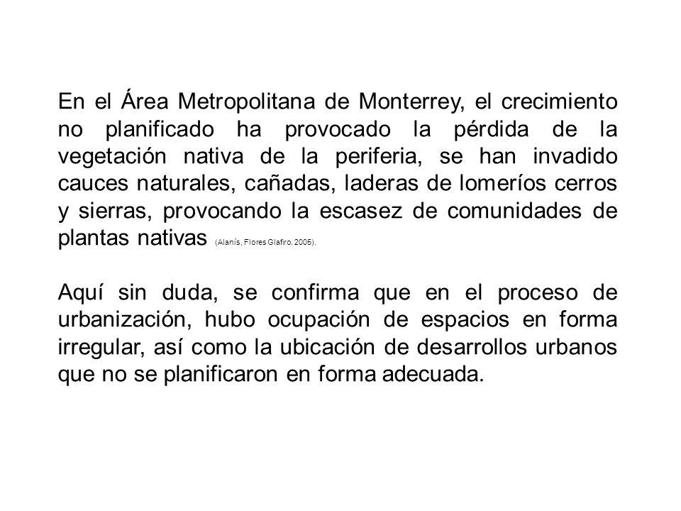 En el Área Metropolitana de Monterrey, el crecimiento no planificado ha provocado la pérdida de la vegetación nativa de la periferia, se han invadido cauces naturales, cañadas, laderas de lomeríos cerros y sierras, provocando la escasez de comunidades de plantas nativas (Alanís, Flores Glafiro.