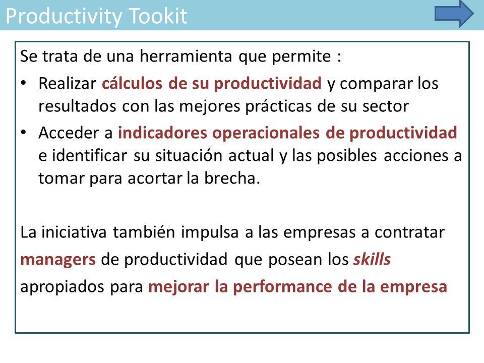 Productivity Tookit Se trata de una herramienta que permite : Realizar cálculos de su productividad y comparar los resultados con las mejores prácticas de su sector Acceder a indicadores operacionales de productividad e identificar su situación actual y las posibles acciones a tomar para acortar la brecha.
