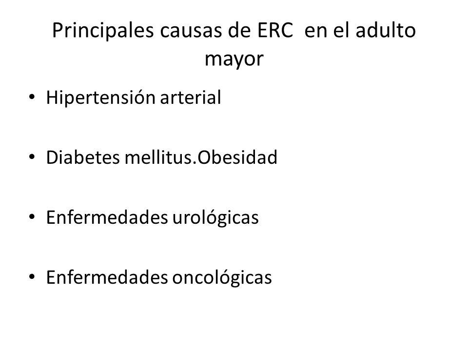 Principales causas de ERC en el adulto mayor Hipertensión arterial Diabetes mellitus.Obesidad Enfermedades urológicas Enfermedades oncológicas