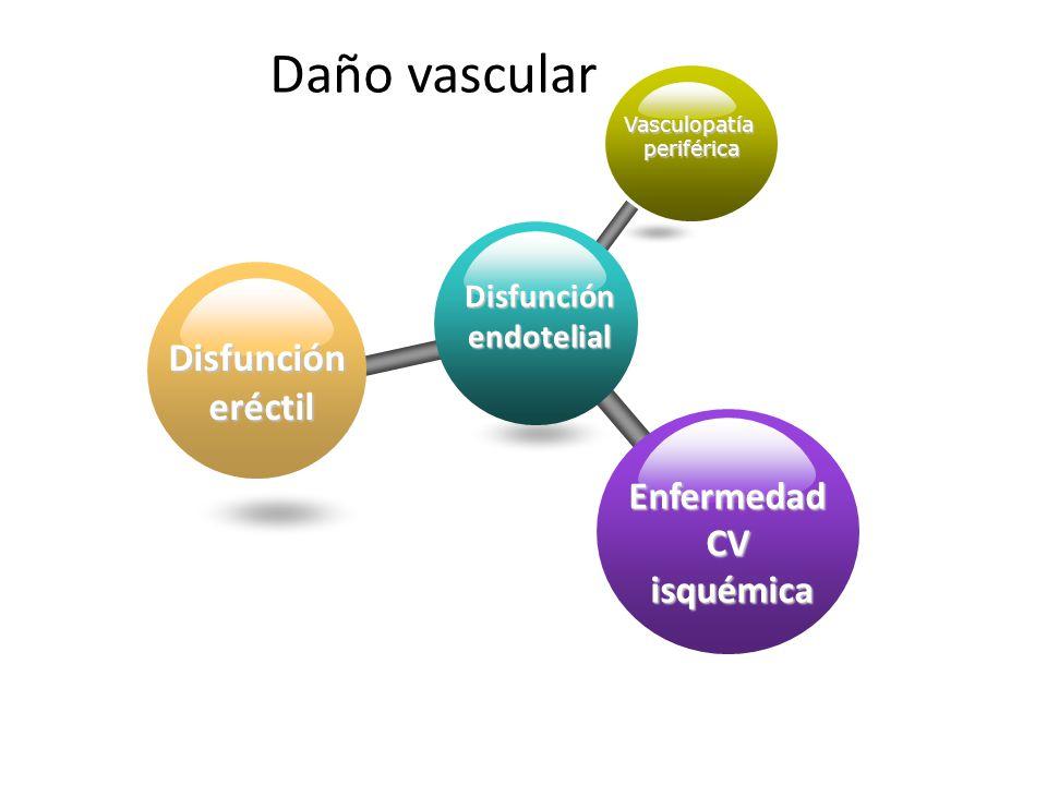 INEF Daño vascular Disfunciónendotelial Vasculopatíaperiférica Disfunción eréctil EnfermedadCVisquémica
