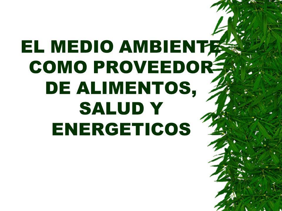 EL MEDIO AMBIENTE COMO PROVEEDOR DE ALIMENTOS, SALUD Y ENERGETICOS