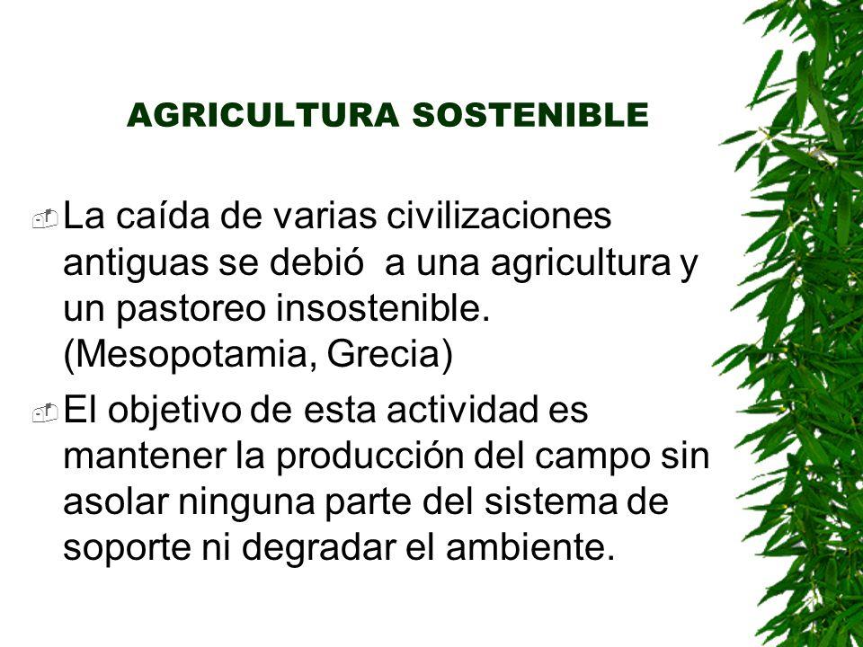 AGRICULTURA SOSTENIBLE  La caída de varias civilizaciones antiguas se debió a una agricultura y un pastoreo insostenible.