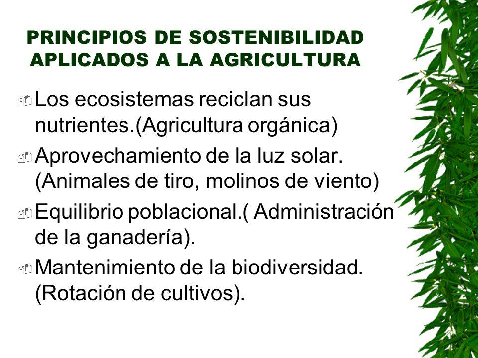 PRINCIPIOS DE SOSTENIBILIDAD APLICADOS A LA AGRICULTURA  Los ecosistemas reciclan sus nutrientes.(Agricultura orgánica)  Aprovechamiento de la luz solar.