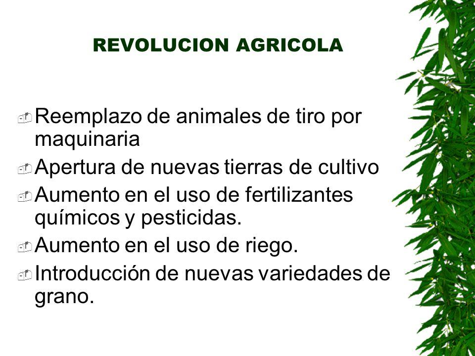 REVOLUCION AGRICOLA  Reemplazo de animales de tiro por maquinaria  Apertura de nuevas tierras de cultivo  Aumento en el uso de fertilizantes químicos y pesticidas.
