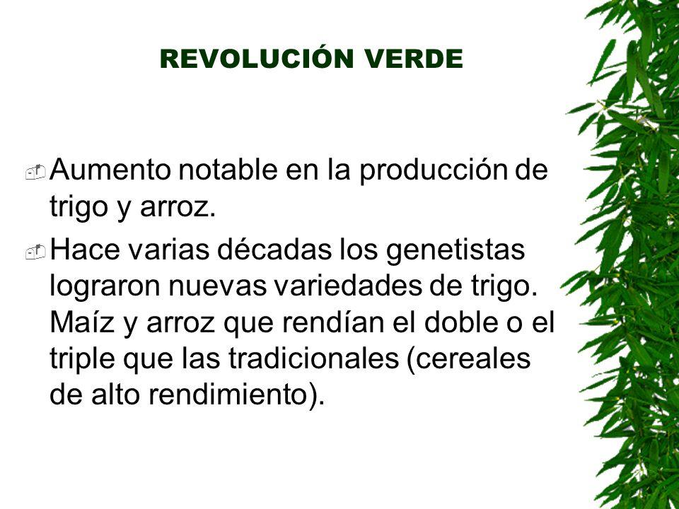 REVOLUCIÓN VERDE  Aumento notable en la producción de trigo y arroz.