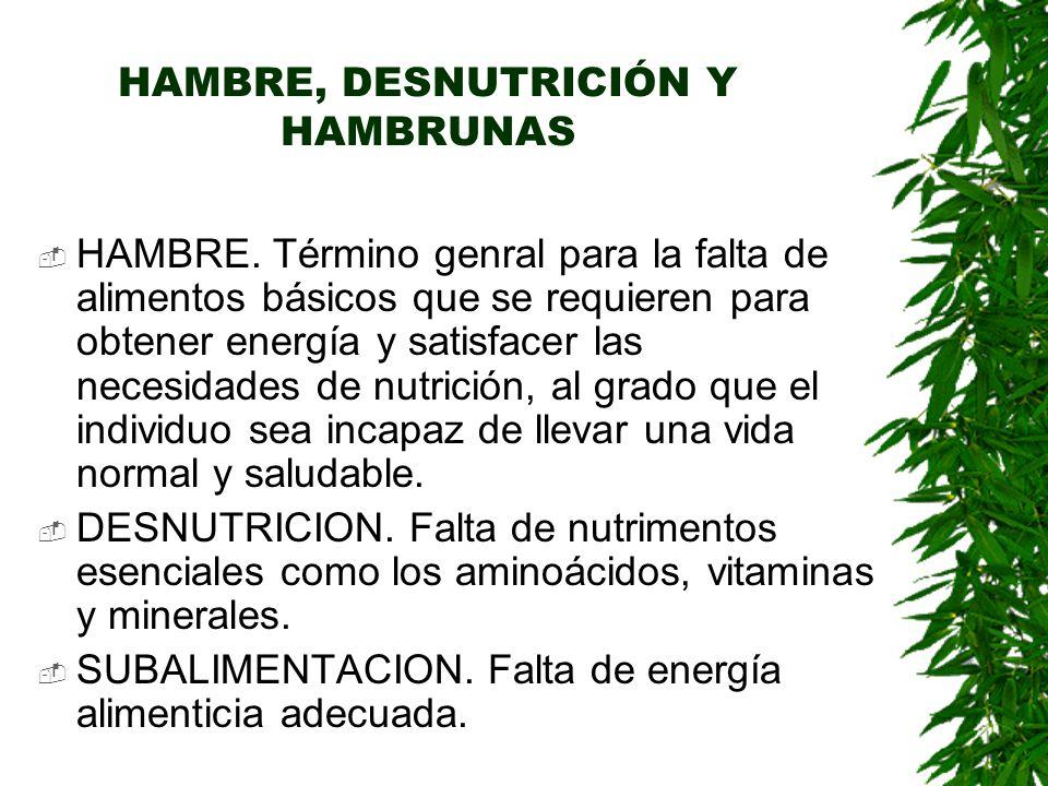 HAMBRE, DESNUTRICIÓN Y HAMBRUNAS  HAMBRE.