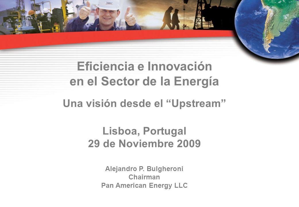 Eficiencia e Innovación en el Sector de la Energía Una visión desde el Upstream Lisboa, Portugal 29 de Noviembre 2009 Alejandro P.
