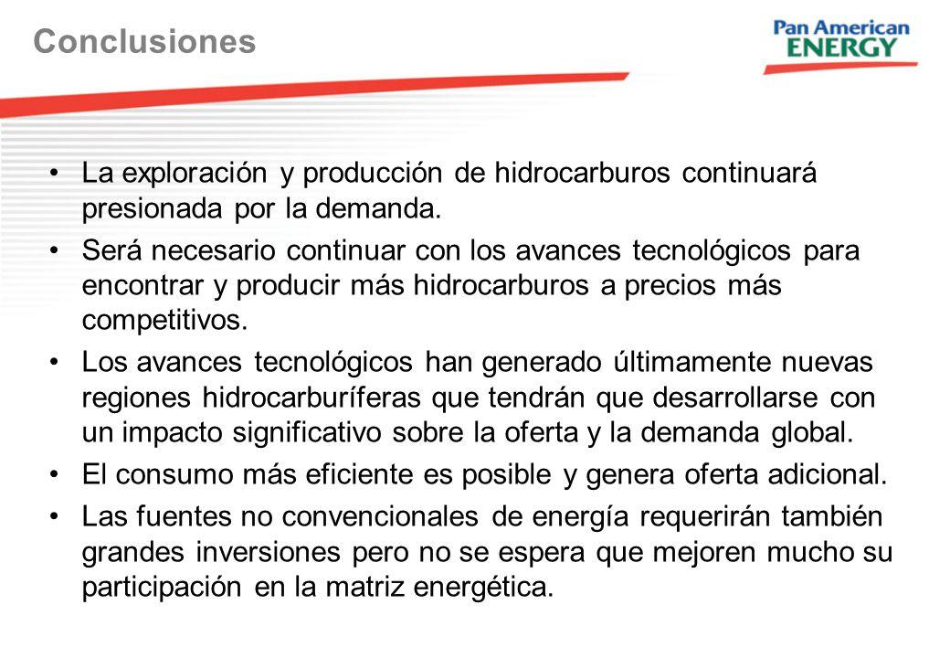 La exploración y producción de hidrocarburos continuará presionada por la demanda.