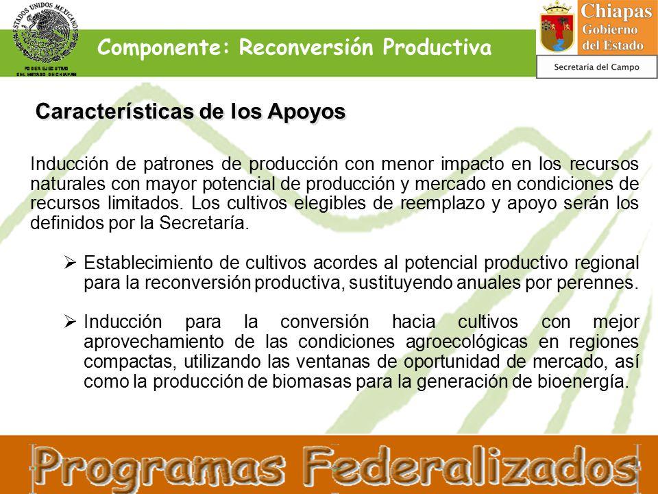 Características de los Apoyos Inducción de patrones de producción con menor impacto en los recursos naturales con mayor potencial de producción y mercado en condiciones de recursos limitados.