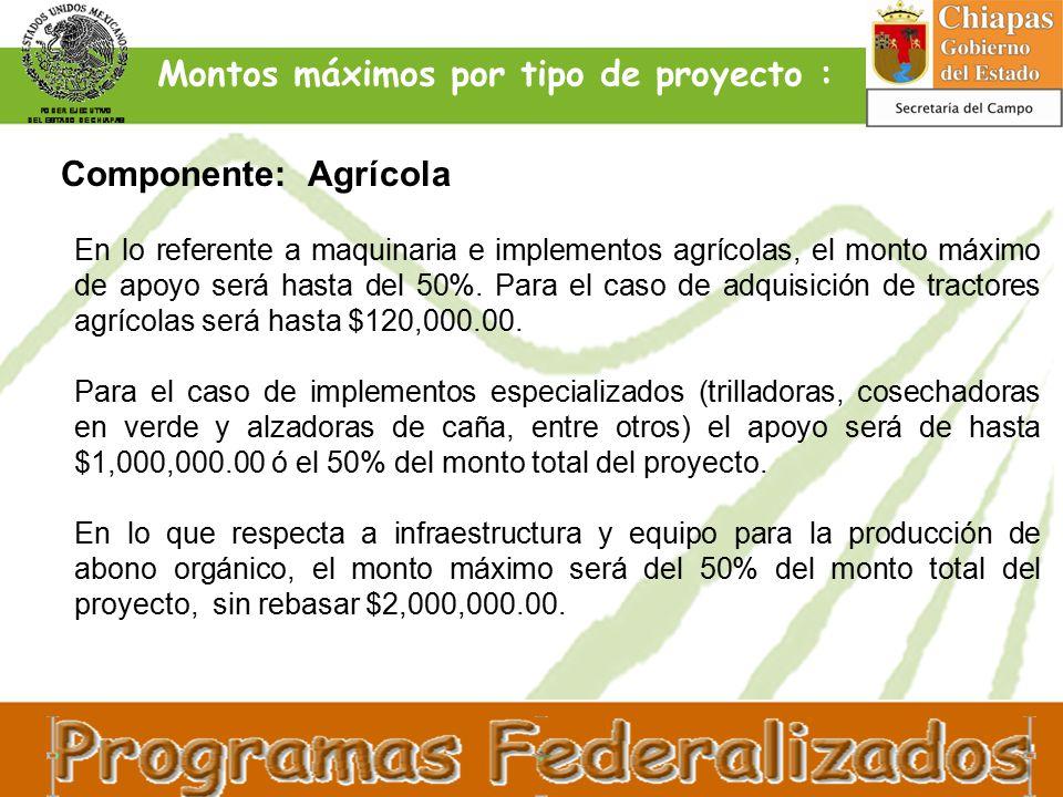 En lo referente a maquinaria e implementos agrícolas, el monto máximo de apoyo será hasta del 50%.