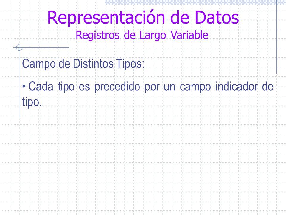 Representación de Datos Registros de Largo Variable Campo de Distintos Tipos: Cada tipo es precedido por un campo indicador de tipo.